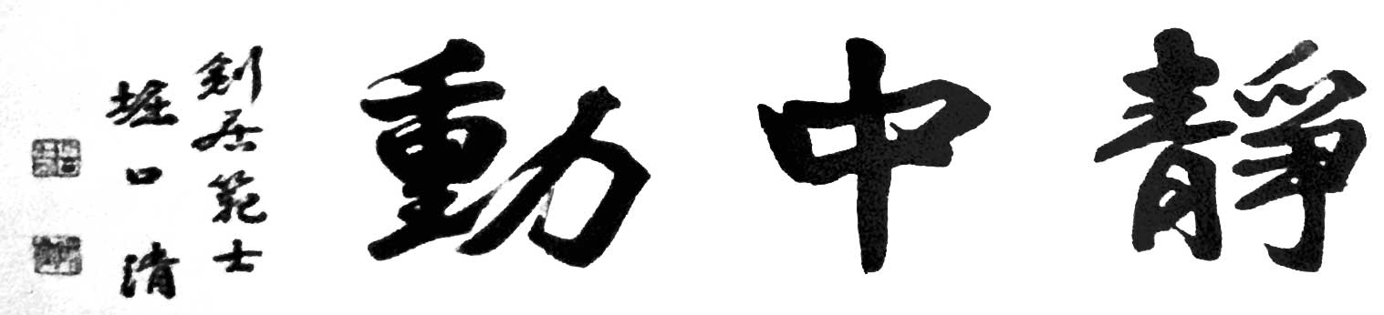 training, centered, Kendo, Iaido, Movement
