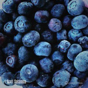 Blueberries, Fruit, Blue Fruit
