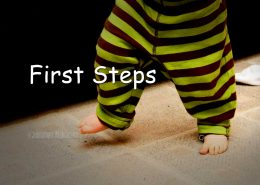 first steps, Getting Started, Start,