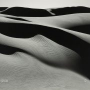 Edward Weston, Photography